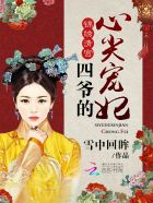 锦绣清宫:四爷的心尖宠妃 作者:雪中回眸