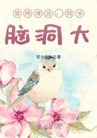 锦绣清宫:四爷,脑洞大 作者:雪中回眸